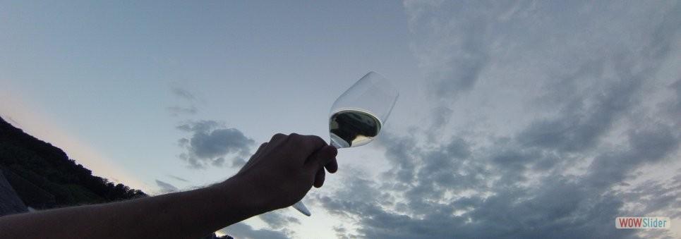 2-wine8